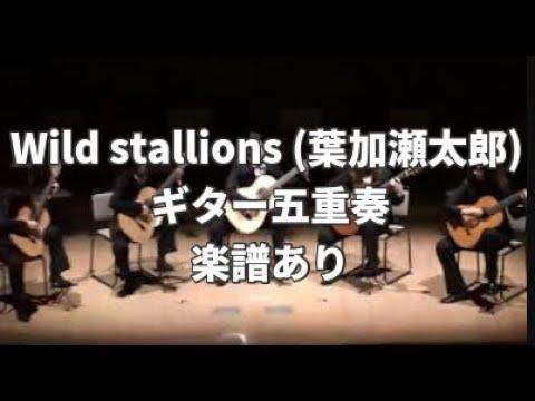 【ギターアンサンブル】④ワイルドスタリオンズ Wild stallions 葉加瀬太郎 【Guitar Ensemble】